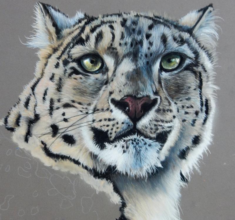 Tierportrait - Faszination der realistischen Malerei mit Pastellkreiden